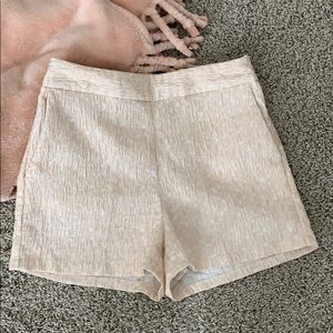 Express High-Waisted Shorts